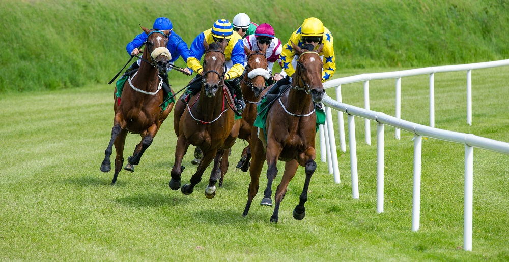 Cum se trucheaza o cursa de cai in ziua de azi