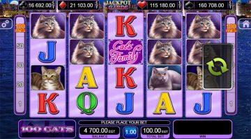 100 Cats sunt chiar mai multe care apar pe slots