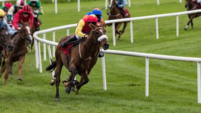 Gestionarea banilor joaca rol important in strategia pe cai