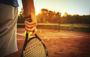 Sistem pariere tenis live bazat pe factori cheie in joc