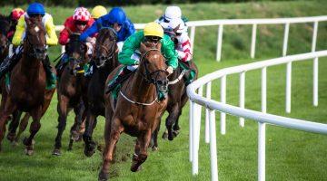 Strategie pariuri curse cai pentru castig pe termen lung